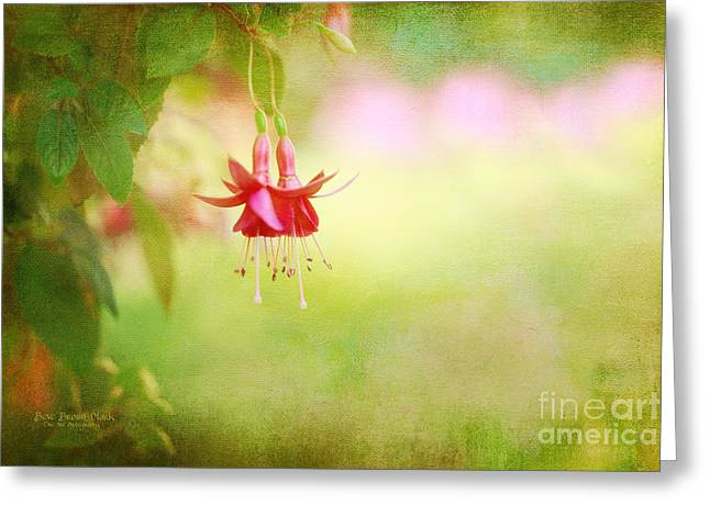 Seeking The Light Greeting Card by Beve Brown-Clark Photography