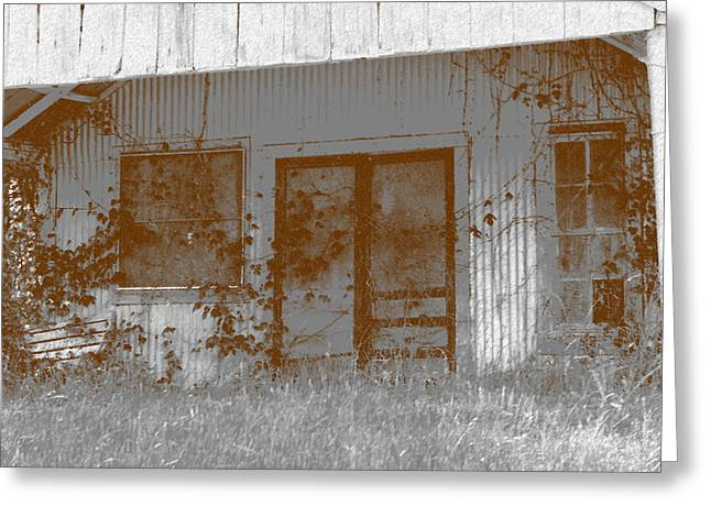 Screen Doors Greeting Cards - Seen Better Days Greeting Card by Connie Fox
