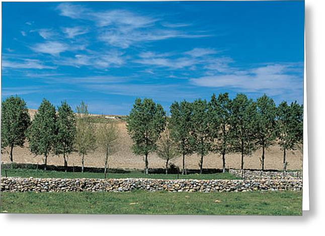 Segovia Spain Greeting Card by Panoramic Images