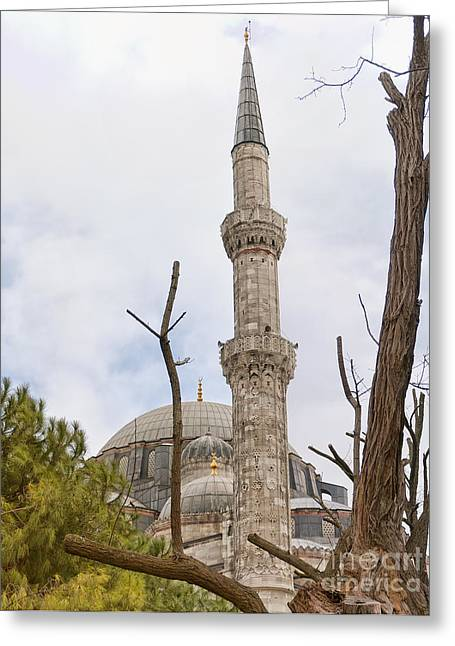 Sehzade Mosque 14 Greeting Card by Antony McAulay