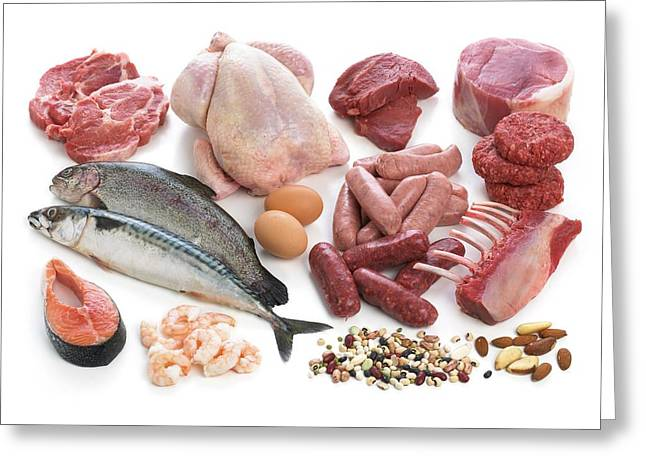 Selection Of Fish And Meats Greeting Card by Science Photo Library