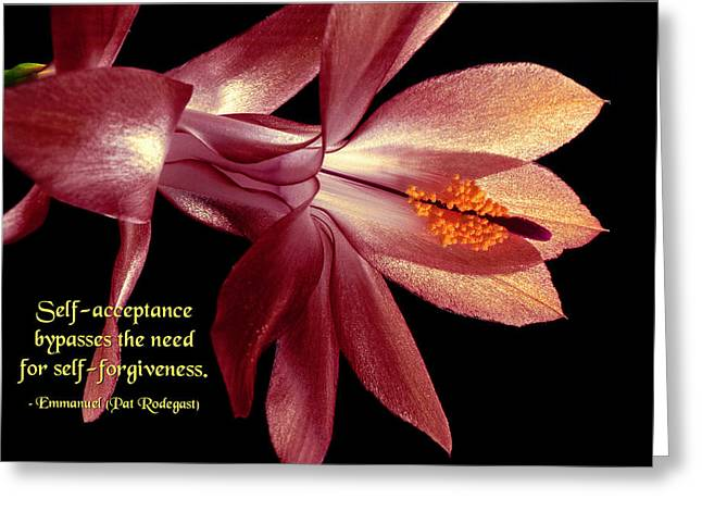 Self-acceptance Greeting Card by Mike Flynn