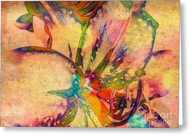 Springtime Floral Abstract Greeting Card