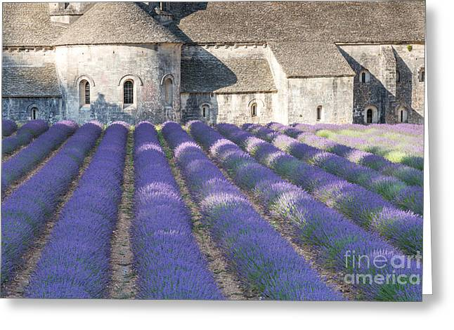Senanque Abbey And Lavender Field - Provence France Greeting Card by Matteo Colombo