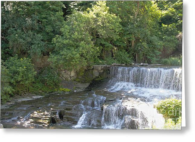 Seneca Keuka Trail Greeting Card by William Norton