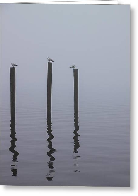 Seneca Lake Morning Mist Greeting Card