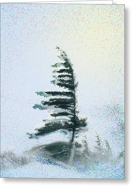 Sentinal At The Northern Treeline Greeting Card