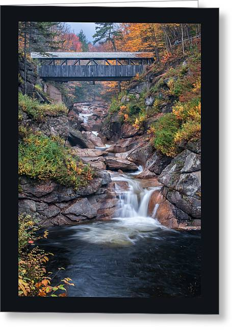 Sentinal Pine Bridge - White Mountains National Forest Greeting Card by Thomas Schoeller