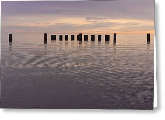 Sentinels Greeting Card by Adam Romanowicz