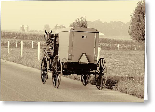 Sepia Amish Buggy Greeting Card by Dan Sproul