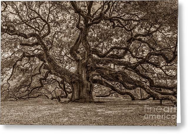 Sepia Angel Oak Greeting Card