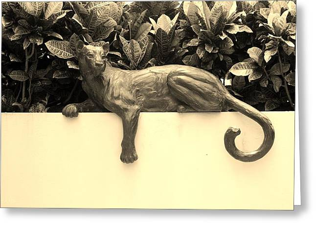 Sepia Cat Greeting Card by Rob Hans