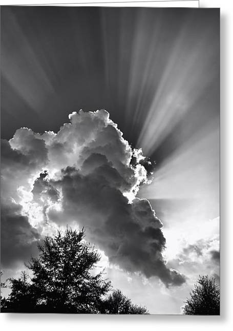 September Rays Greeting Card