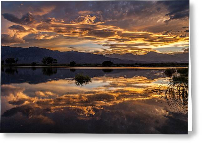 September Sunset Reflected Greeting Card by Cat Connor