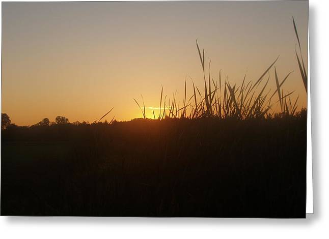 Greeting Card featuring the photograph September Sunset by Teresa Schomig