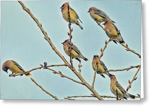 Septet Greeting Card by Constantine Gregory