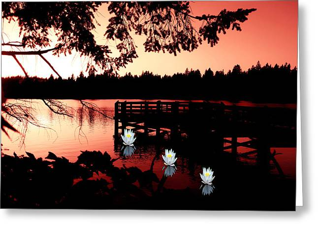 Serene Scene At Lake Ballinger Greeting Card