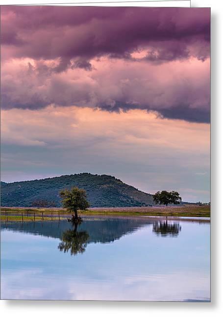 Serenity And Fullness Greeting Card by Edgar Laureano