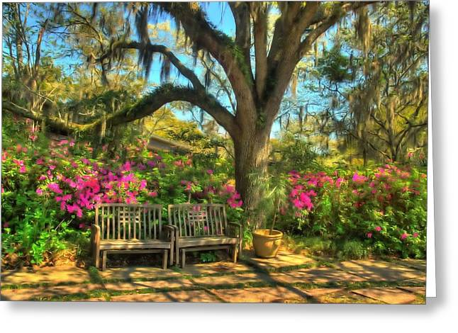 Serenity Bench Greeting Card by Ed Roberts