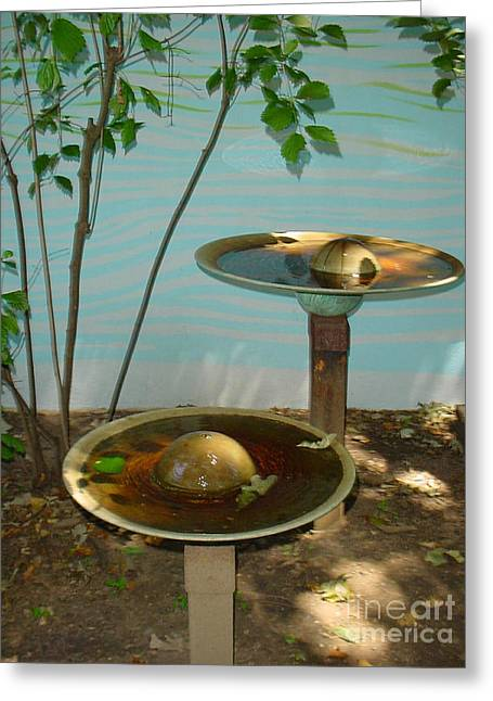 Serenity  Fountain Greeting Card by Lyric Lucas