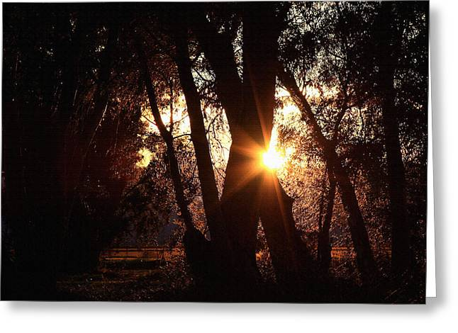 Greeting Card featuring the photograph Serenity by Jennifer Muller