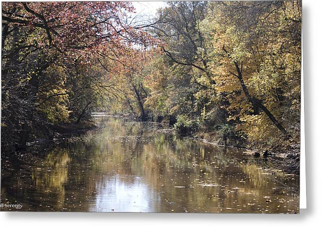 Serenity River Greeting Card by Nancy Edwards