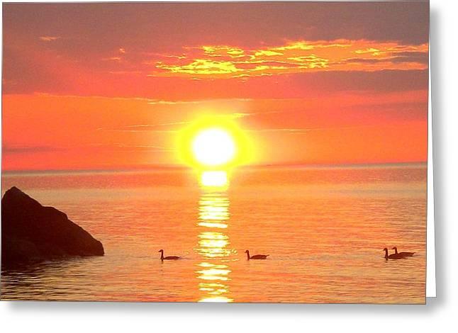 Serenity - Sunset - Panaramic Greeting Card by James Scott Preston