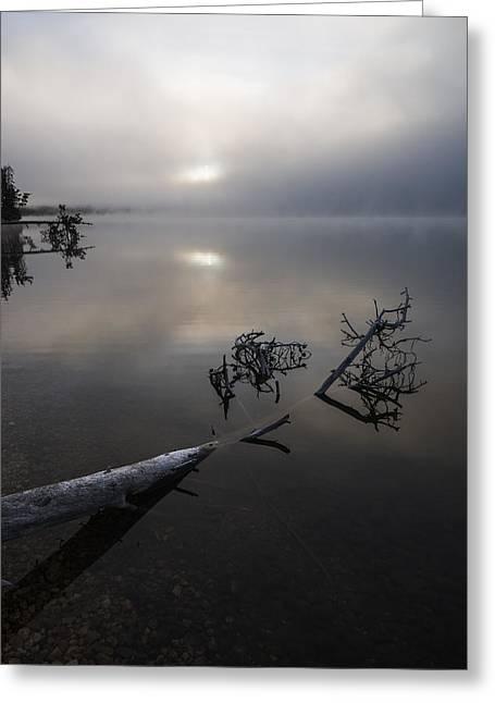 Serenity Greeting Card by Vishwanath Bhat