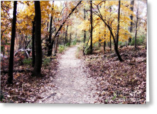 Greeting Card featuring the photograph Serenity Walk In The Woods by Peggy Franz
