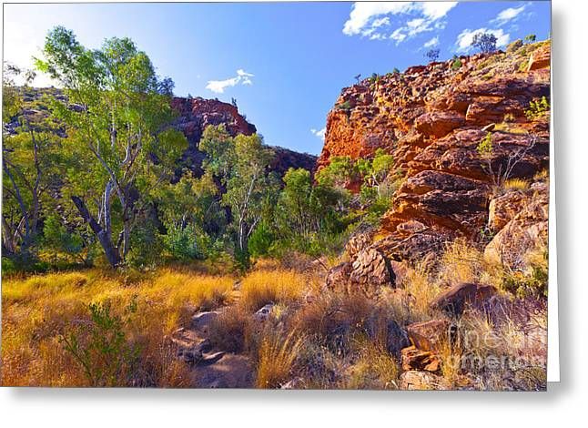 Serpentine Creek  Greeting Card