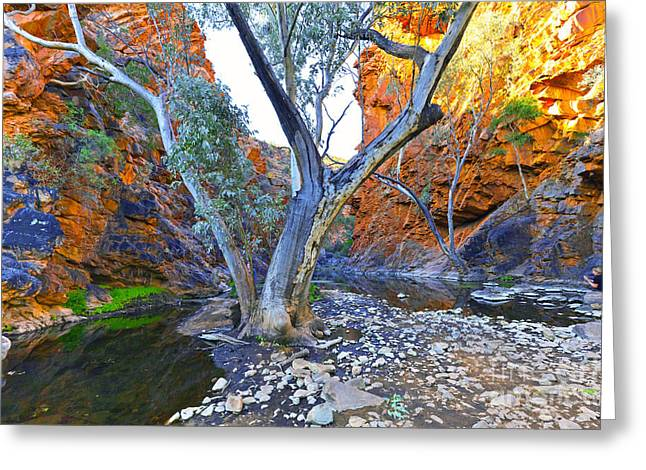 Serpentine Gorge Greeting Card