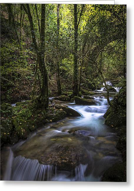 Greeting Card featuring the photograph Sesin Stream Near Caaveiro by Pablo Avanzini