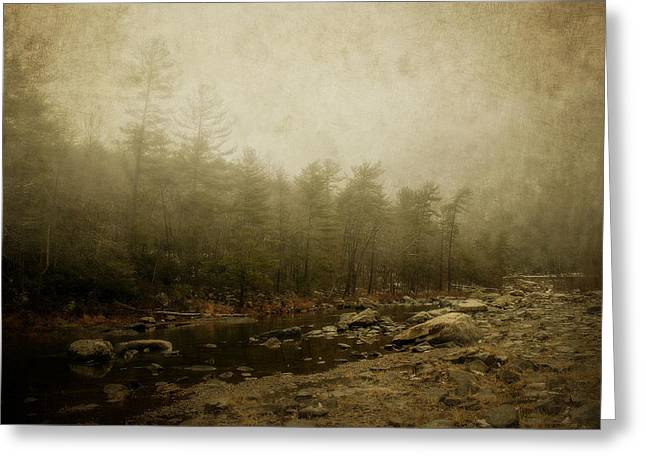 Set In Fog Greeting Card by Kathy Jennings