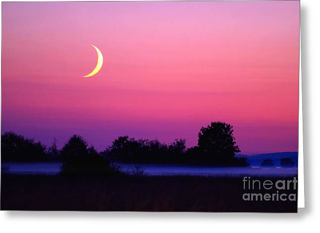 Setting Crescent Moon At Dusk Greeting Card by Douglas Taylor