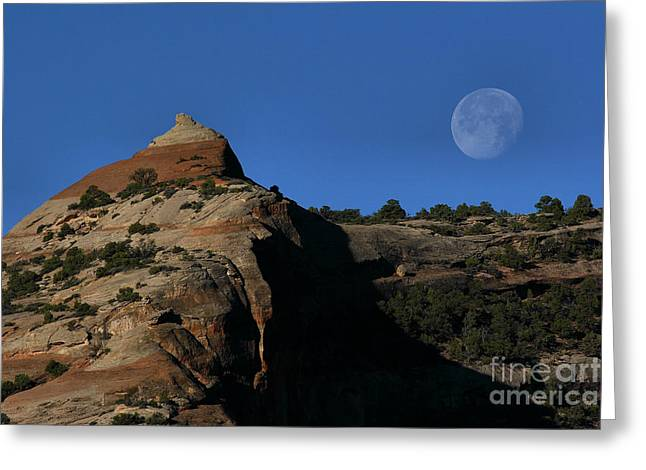 Greeting Card featuring the photograph Setting Moon by Steven Reed
