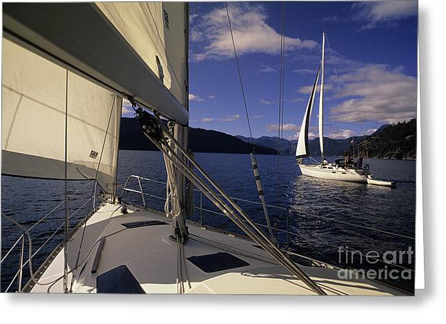 Setting Sail Greeting Card by Bob Christopher