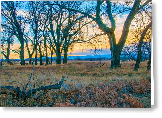 Greeting Card featuring the photograph Setting Sun At Rocky Mountain Arsenal_1 by Tom Potter