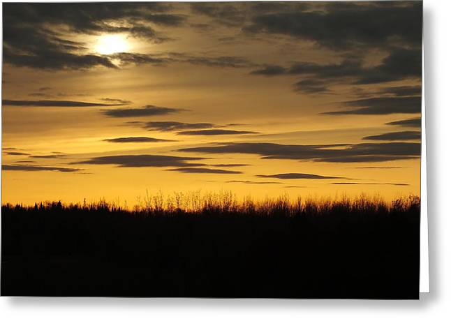 Greeting Card featuring the photograph Setting Sun by Gene Cyr