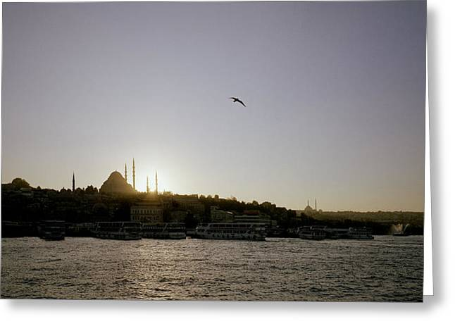 Setting Sun Over Istanbul Greeting Card by Shaun Higson