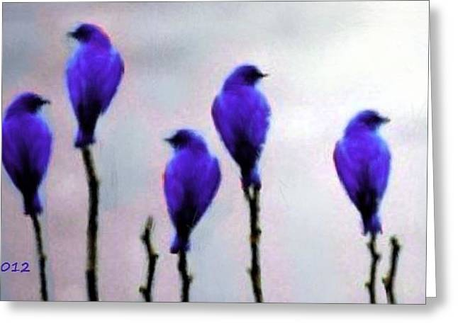 Seven Birds Of Purple Greeting Card by Bruce Nutting