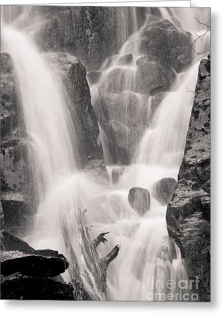 Seward Falls Greeting Card by Chris Heitstuman