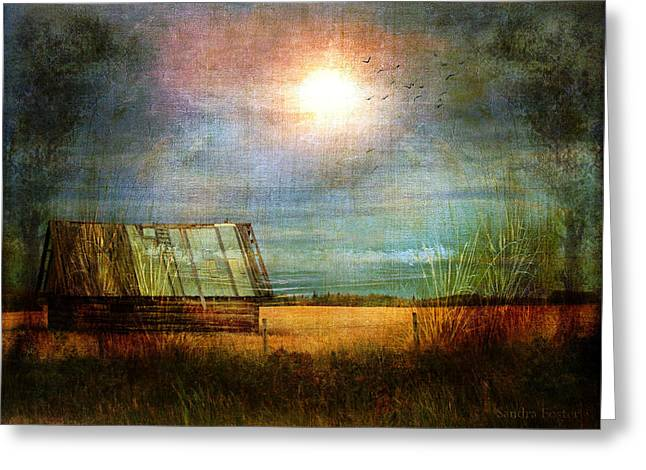 Greeting Card featuring the photograph Shack On The Prairie Corner  by Sandra Foster