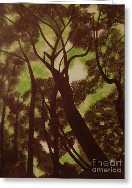 Shade Trees Greeting Card