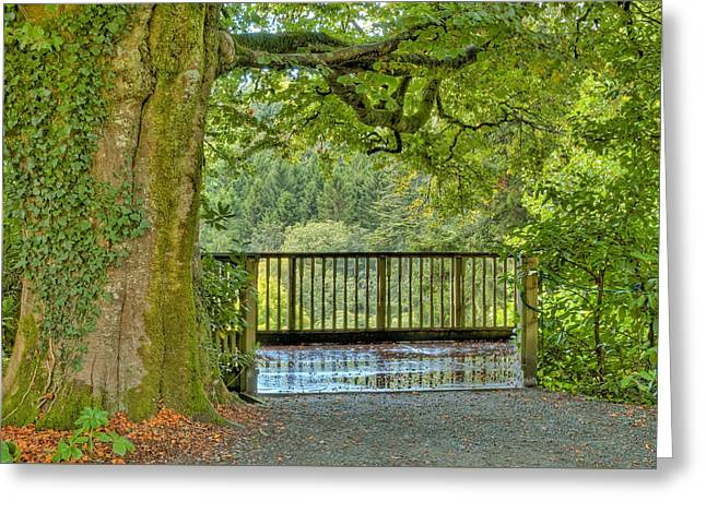 Shaded Overlook. Greeting Card by Rob Huntley