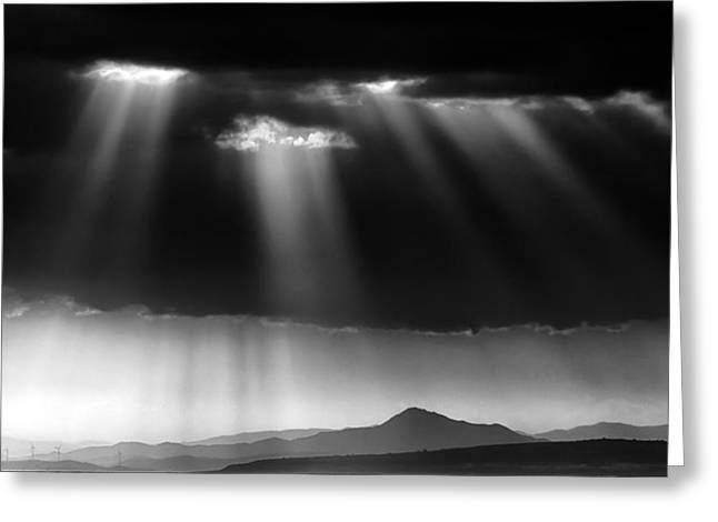 Shades Of Grey Greeting Card by Stelios Kleanthous