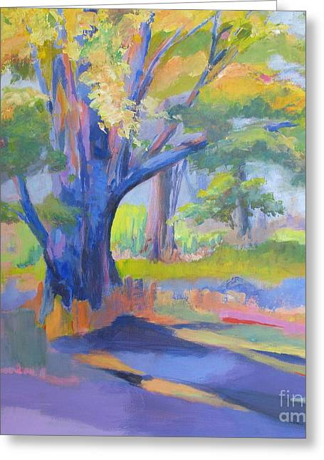 Shades Of Light Greeting Card by John Nussbaum