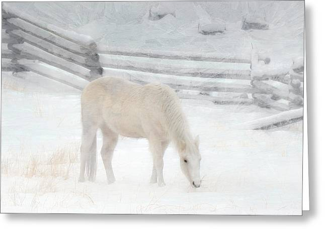 Shades Of Pale Greeting Card by Ed Hall