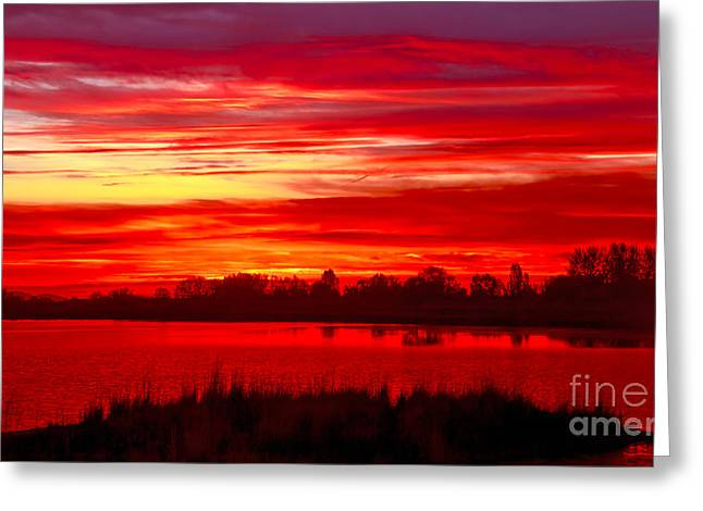 Shades Of Red Greeting Card by Robert Bales