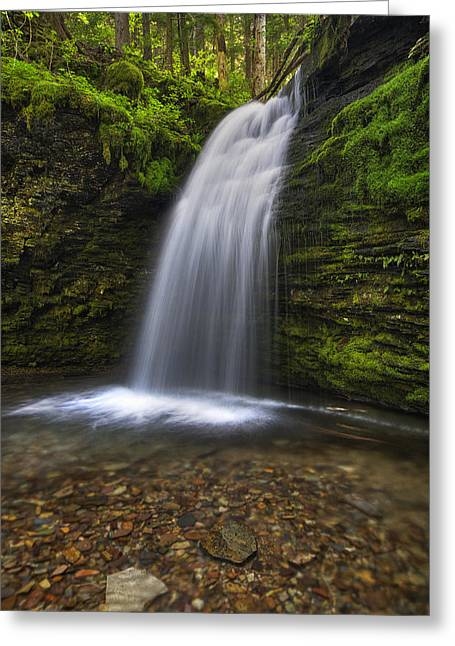 Shadow Falls Greeting Card by Mark Kiver