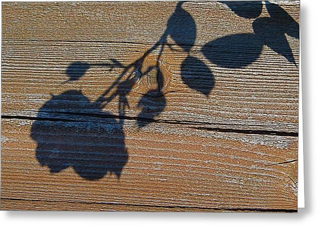 Shadow Of Beauty Greeting Card